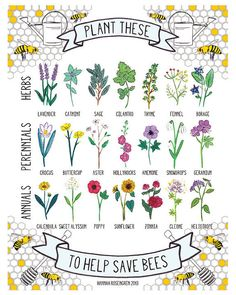 Lovely Garden Art Print Save the Bees :: Plant These to Help Save Bees