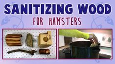 This video will show you one way to sanitize wooden hamster toys by using boiling water. Please ask an adult for help if needed! :) Remember to discard wood . Diy Hamster Toys, Baby Hamster, Hamster Treats, Hamster House, Guinea Pig Toys, Hamster Stuff, Pet Mice, Pet Rats, Pet Rodents