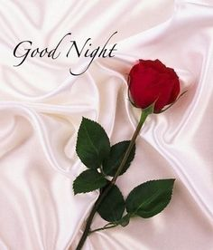 Discover and share Romantic Good Night Quotes. Explore our collection of motivational and famous quotes by authors you know and love. Good Night Quotes, Good Night Love Messages, New Good Night Images, Good Night Greetings, Night Wishes, Evening Greetings, Beautiful Good Night Images, Romantic Good Night, Cute Good Night