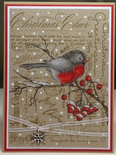 Gorgeous Christmas card - can use my BG stamp with another bolder image on top!