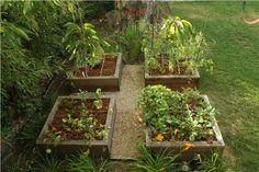 raised beds for vegetables, irrigation system