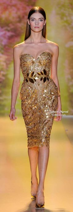 Zuhair Murad Spring 2014 Haute Couture collection showed models with center parted hair, pin straight. An easy look to pull for your haute couture night! Fashion Art, Couture Fashion, Runway Fashion, Dress Fashion, Fashion Clothes, Womens Fashion, Zuhair Murad, Elegant Dresses, Pretty Dresses
