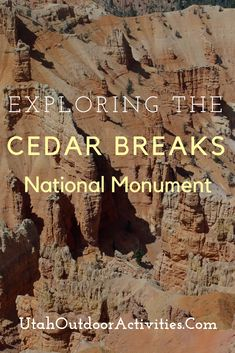 With an elevation of over feet the Cedar Breaks National Monument offers not only the red rock beauty of southern Utah, but also the beauty of a high elevation forest. Brian Head Utah, Cedar City Utah, Bristlecone Pine, Lake Powell, Camping Spots, Worldwide Travel, Rv Parks, 50 States, Outdoor Adventures