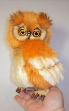 Cute orange and white owl Funny Birds, Cute Birds, Pretty Birds, Exotic Birds, Colorful Birds, Exotic Pets, Owl Photos, Owl Pictures, Beautiful Owl