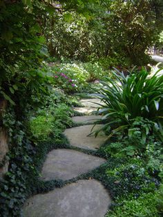 Pretty path. Maybe something running behind or alongside the playset over to the someday-bridge?