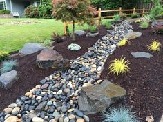 a dry creek bed consisting of various sizes of pebbles river rock and boulders and surrounded by a perennial garden lovely yard landscaping - Garden Design Dry River Bed