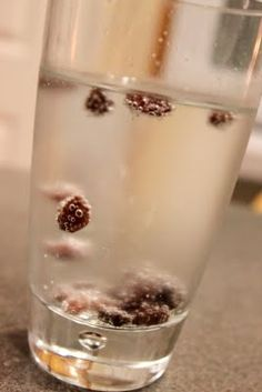 This is a good blog and I live this simple activity! Dancing raisins! Can't wait to do all this fun stuff with Sophie!