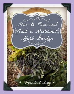Herbal Gardening How to plan and plant a medicinal herb garden - www. - What medicinal herbs do you need to plant? How do you grow them? There are so many good herbs; how do I decide what to plant? Vegetable Garden, Garden Plants, Shade Garden, Permaculture Design, Healing Herbs, Medicinal Plants, Organic Gardening, Gardening Tips, Gardening Books