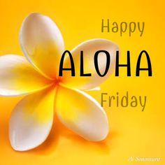 HAPPY ALOHA Friday. Hawaii Hula, Aloha Hawaii, Hawaiian Birthday, Hawaiian Art, Aloha Quotes, All About Hawaii, King Kamehameha, Aloha Friday, Maui Travel