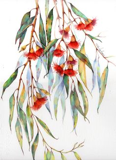 """""""Eucalyptus"""" by Lily Soga. Paintings for Sale. Botanical Drawings, Botanical Art, Art Floral, Watercolor Leaves, Watercolor Paintings, Illustration Art Dessin, Australian Native Flowers, Alcohol Ink Painting, Painting & Drawing"""