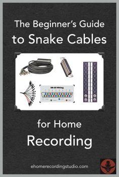 Les câbles de serpent 58c audio