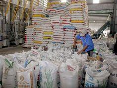 Chấp thuận đề xuất mua tạm trữ 1 triệu tấn gạo | TIN TỨC NÔNG NGHIỆP