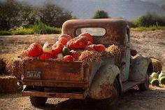 Olde Truck w/Pumpkins