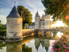 Walk in the footsteps of French royalty at a Chateau in the Loire Valley, like Chateau de Sully-sur-Loire.