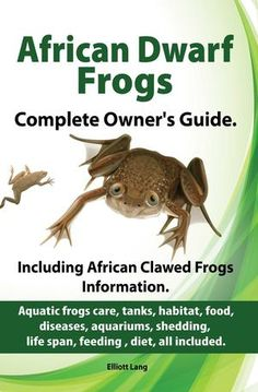 African Dwarf Frog Habitat | African Dwarf Frogs as pets. Care, tanks, habitat, food, diseases ...