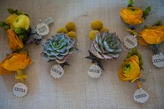 boutonnieres with succulents, Billy Balls, Groom, Maid, Posey. Yellow