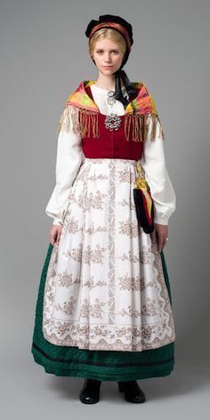 FolkCostume&Embroidery: Overview of Norwegian costume, part 4 The North Folk Costume, Costume Dress, Norwegian Clothing, Folklore, Native Wears, Costumes Around The World, Frozen Costume, Ethnic Fashion, Traditional Dresses