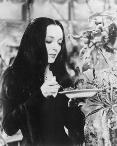 Carolyn Jones - The Addams Family Morticia feeding Cleopatra