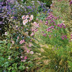 www.rustica.fr - Avoir des massifs toujours fleuris - Simplicité des formes, unité des couleurs