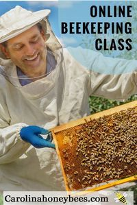 Learn how to be a beekeeper from Master Beekeeper Charlotte Anderson.  Drawing on 10 years experience teaching new beekeepers, this online beekeeping class will help you get off to a great start.  Carolina Honeybees