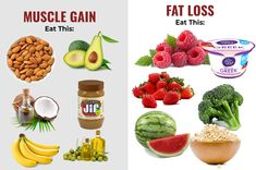 Top foods for muscle gain and fat loss - My Super Body Transformation