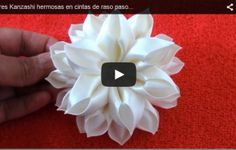 Um elegante FLORES VIDEO do FITA