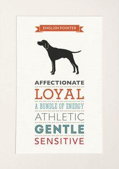 Pointer inglese cane razza tratti stampa regalo di WellBredDesign
