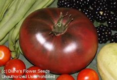 Tomato 'Indian Stripe' ON my to grow list.  Reportedly more productive than Cherokee Purple.