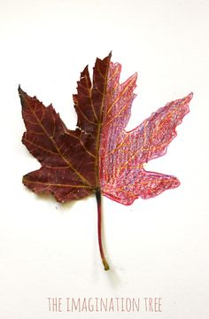 Make some beautiful mirror leaf drawings as an Autumn art activity for kids! Great for practising observational drawing skills and learning about nature