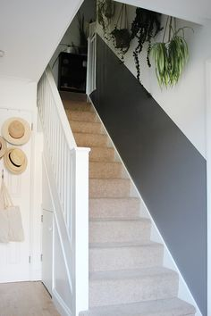 Home sweet home Will a half-painted stairway wall beat dirty hand marks and scuffs for good? Decorating Stairway Walls, Stairwell Wall, Hallway Paint, Staircase Wall Decor, Stair Walls, Hallway Walls, Stairway Paint Ideas, Paint Walls, Half Painted Walls