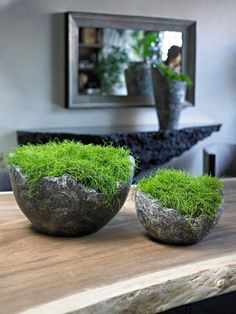 wavy bowl supplied by koberg If there are some patterns, or if the plants are placed on the…want those urns! Dish Garden, Garden Pots, Ikebana, Decoration Restaurant, Home Decoration, Interior Plants, Plantation, Garden Spaces, Plant Decor