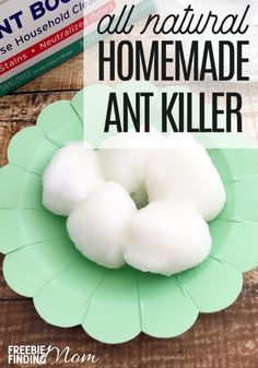 How To Kill Ants Naturally: Homemade Ant Killer Recipe