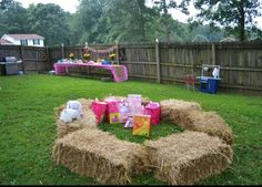 Dinika S Petting Zoo Party Backyard Birthday Parties Horse 4th