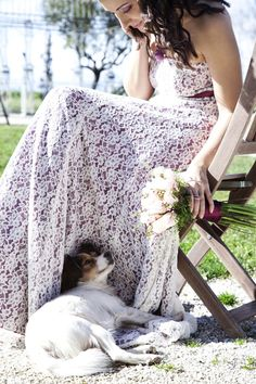 i don't know which i love more, the dog or the bride's dress