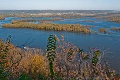 A view of the sprawling Mississippi from Pike's Peak overlook in Northeastern Iowa. Early fall.