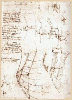 Leonard de Vinci / Etude d'une grande aile aux extrémités manoeuvrables v. 1480 / 1500 Extrait du Codex Atlanticus Bibliothèque Ambrosienne – Milan Léonard est persuadé que l'homme pourrait voler à la seule condition d'imiter les formes parfaites de la nature.
