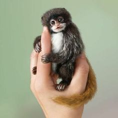 Ashton Drake Little Lulu Amazing Amazon Finger Monkey | eBay