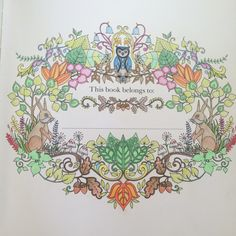 Enchanted forest adult colouring book johanna basford #fabercastell #enchantedforest #coloring