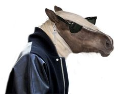 A horse is a horse, of course of course...but I ain't a horse man...