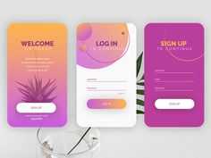 Daily UI Challenge #1 - Sign Up Form