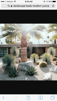 Alternatives to Grass : Front Yard Landscaping Ideas Lawn alternative - desert landscaping Landscaping With Rocks, Modern Landscaping, Front Yard Landscaping, Backyard Landscaping, Landscaping Ideas, Landscaping Software, Landscaping Company, Backyard Ideas, Landscaping Contractors