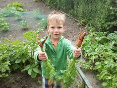 Kinderen in de moestuin. Blog van de Cruydthof: http://www.cruydthof.nl/blog/10-tips-voor-een-kindvriendelijke-tuin/