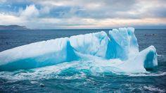 Iceberg by Newfoundland and Labrador Tourism, via Flickr