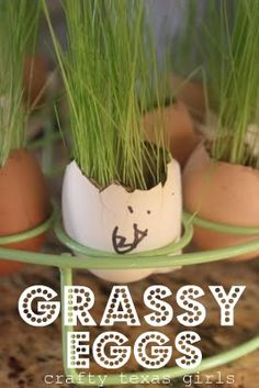 Crafty Texas Girls: Crafty How To: New Easy Grass Easter Eggs