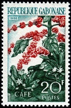 Coffee shrub and beans, designed and engraved by Jacques Derrey, and issued by Gabon on October 15, 1968, Scott No. 232.