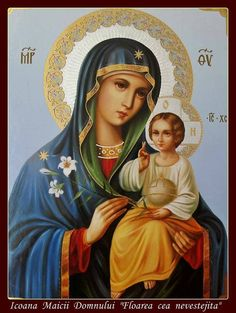 Our Lady and the Infant Jesus Blessed Mother Mary, Divine Mother, Blessed Virgin Mary, Religious Pictures, Religious Icons, Religious Art, Madonna Und Kind, Madonna And Child, Mont Carmel