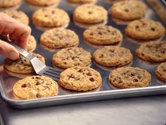 DoubleTree Just Shared Its Famous Chocolate Chip Cookie Recipe So You Can Make Them at Home They use a surprising ingredient. Doubletree Chocolate Chip Cookie Recipe, Famous Chocolate Chip Cookie Recipe, Doubletree Cookies, Chocolate Chip Recipes, Chocolate Chip Cookies, Chocolate Belga, Frozen Cookies, Popsugar Food, Galletas Cookies
