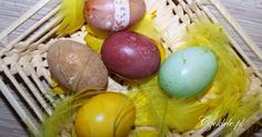 naturalne barwniki do jajek/pisanek/wydmuszek