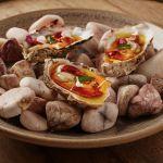 Grilovaná Muirgen, foie-gras, mořský ježek, muškátový ocet // Grilled Muirgen, foie-gras, sea urchin, sweet muscat