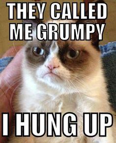 Grumpy Cat on annoying phone calls